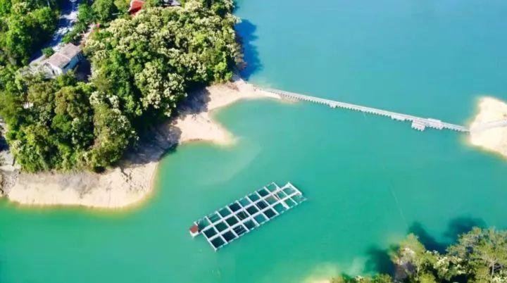 中国首批兴建的十大国家森林公园,广州就有一个,生态好得有鳄鱼出没!