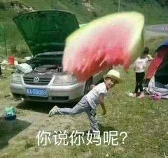 """""""车没学会,教练疯了…""""哈哈哈xswl"""
