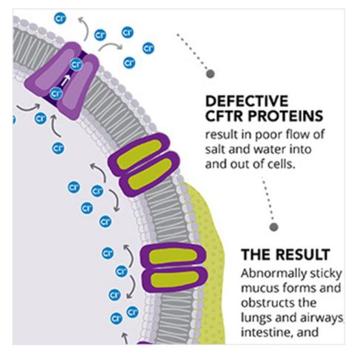 """拯救被""""遗落""""的10%患者,这种RNA疗法带来了什么?"""