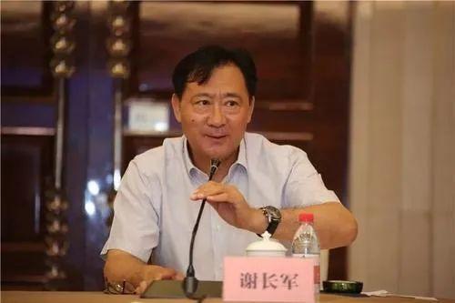 原中国国电集团?公司党组成员、副总经理谢长军接受中央纪委国家监委纪律审